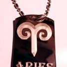 Military Dog Tag Metal Chain Necklace - Celtic Zodiac Signs Sign Aries Ram