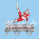 """Tokyo Pommel Horse"" Hero & Train Gymnastics - Rectangle Refrigerator Magnet"