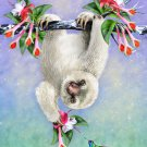 Cute Baby Sloth Hanging From Tree - Vinyl Print Poster