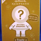 2012 - Hallmark - Keepsake - Mystery Ornament - Winter Fairy - Christmas Ornament