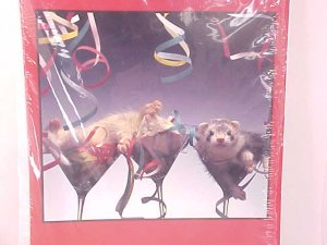 Congratulations Grin and Ferret Greeting Cards NEW