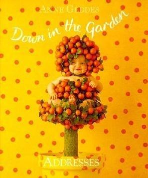 Orange Tree Baby Address Anne Geddes Book New Garden