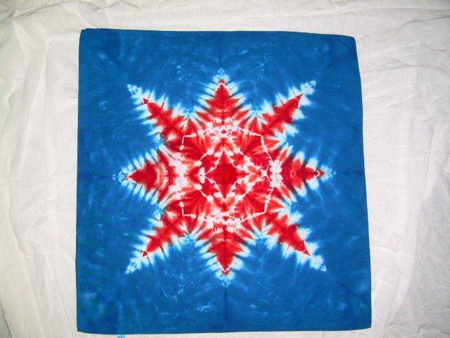 Tie Dye Bandanna #17