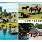 New Forest Multiview Postcard. Mauritron 220727