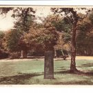 New Forest Rufus Stone View Postcard. Mauritron 220744