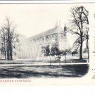 Winchester Cathedral  Postcard. Mauritron 248444
