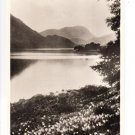 Wordsworths Daffodils by Ullswater Postcard. Mauritron 249877