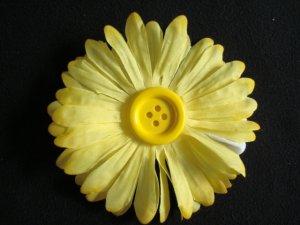 Madison/Yellow