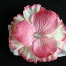 Kate/Cream and Pink with Pink Center on White Band