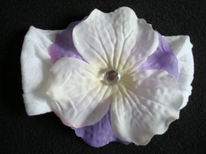 Ali/Purple and White on White Band