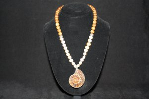 Ammonite Fossil  Necklace - DMD0293