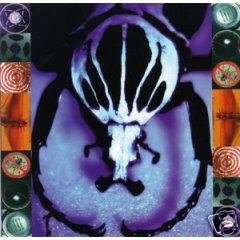 AGE OF ELECTRIC - Make a Pest a Pet (1997) - CD
