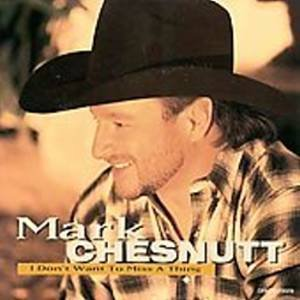 MARK CHESNUTT - I Don't Want To Miss A Thing (1998) - CD Single