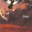 RUNA PACHA - Machu Picchu Vol.4 (1994) - Cassette Tape