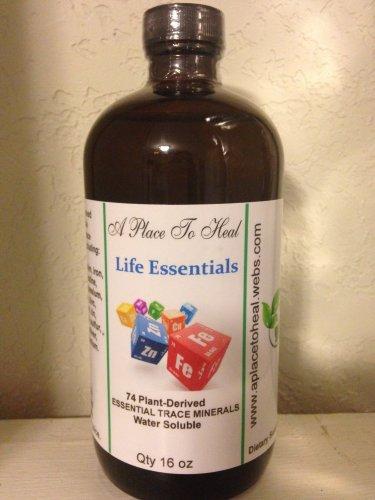 Life Essentials Trace Minerals 16oz.