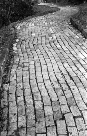 The Yellow Brick Road, Land of Oz, Beech Mountain, NC
