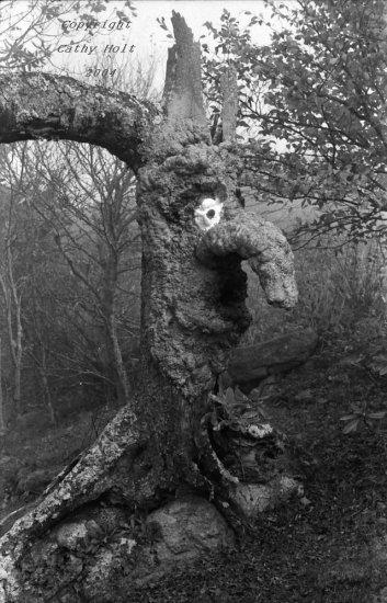 Talking Apple Tree #2 on the Yellow Brick Road, Land of Oz, Beech Mountain, NC