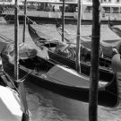 """A series of gondolas""  Venice, Italy"