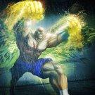 Street Fighter Sagat 24'' Poster