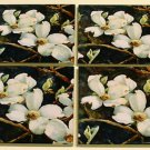 White Dogwood Coaster Set of 4