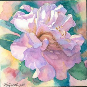 Camelia - watercolor on Clayboard