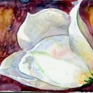 White Tulip #2- watercolor on Yupo