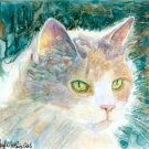 Pretty Girl #2- Calico - reproduction/ print