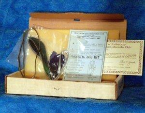 Stained Glass Kit ~ Iris Sun Catcher