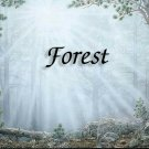Forest #PT Personalized Gift First Name Meaning Print