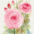 ROSE, Original paintings of flower on paper.