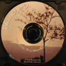 12 Step Recovery Talks Al-Anon Speaker CDs - Blanche D.