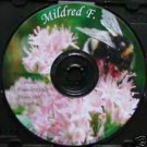 AA - Alcoholics Anonymous 12 Step Speaker CD- Mildred F