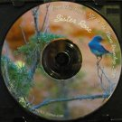 Al-anon Speaker CDs Sister Rose from The Bronx NY 2010