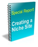 Creating a niche site reports