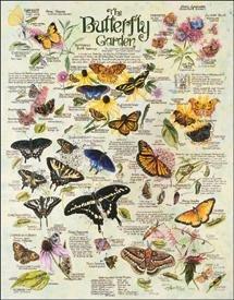 TIN SIGN R. Lee - Butterfly Garden - 983