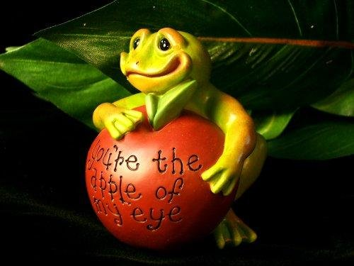 "Frog ""Apple Of My Eye"" Paperweight - Second Nature - 30504"