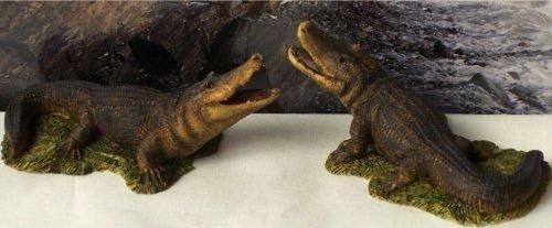 Country Artist Alligators Figurines Set of 2 Pieces -4257