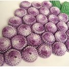 Bottlecap Grape Hot Pad Crochet Pattern  C 1204