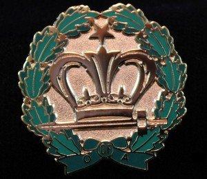 Amaranth Member Masonic Freemason Lapel Pin