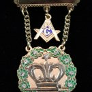 Amaranth Past Royal Patron 11 Stones & Square & Compass Masonic Jewel