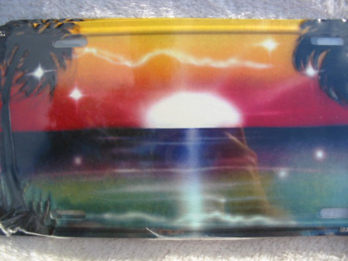 Airbrushed metal license plate-Sunrise