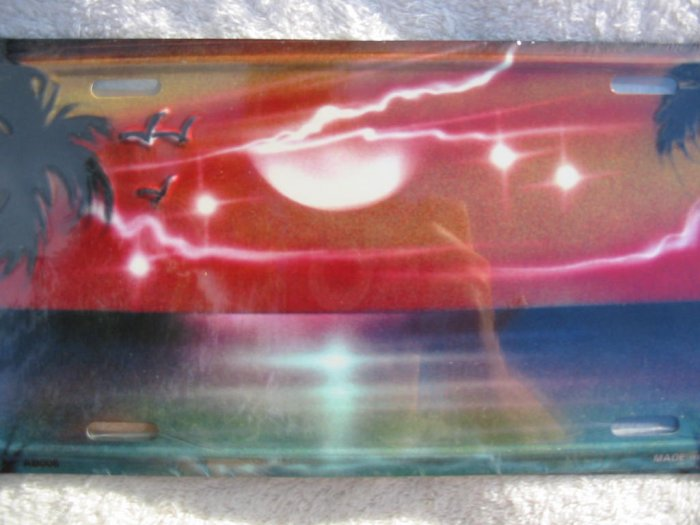 Airbrushed metal license plate-Sunset