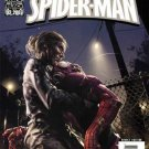 The Sensational Spider-Man #33 Spider-Man Unmasked