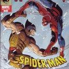 Spider-Man Versus Wolverine What If? #1 One Shot