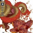 Conan #31 Dark Horse