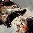 Conan #15 Dark Horse