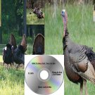 Turkey Call 2 Cd Set Hunting Calls Works On Primos Mojo E Caller Predation And More