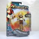 "Thundercats Cheetara 4"" modern action figure BanDai 2011"