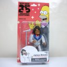 Simpsons James Brown 25th series 1 celebrity guest star figure NECA 2013
