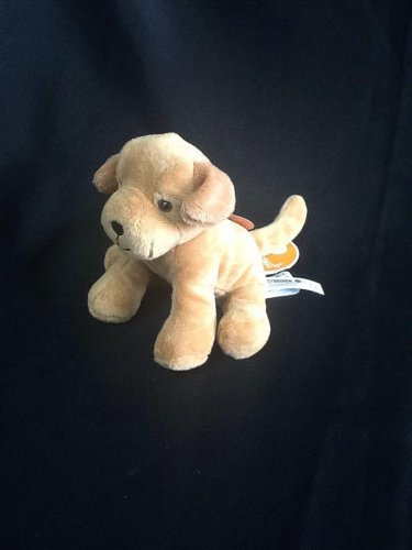 Gymboree Plush Dog Sound Animals-Pets